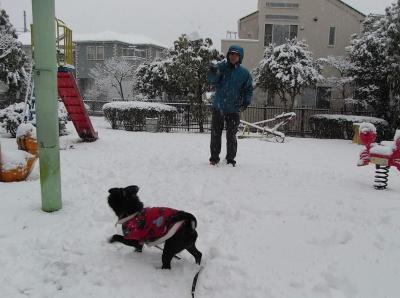 080203雪合戦