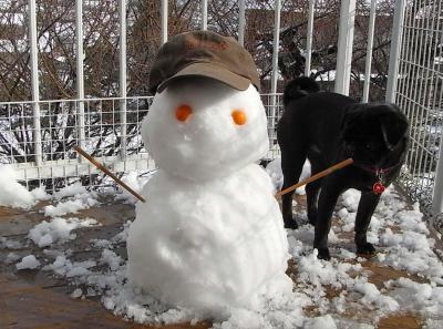 080210雪だるま