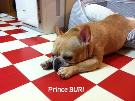 buri2のコピー