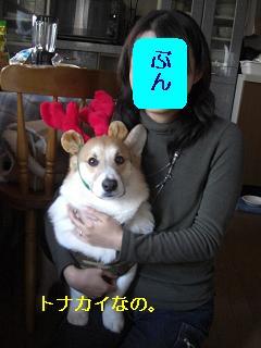 メリメリクリスマ~ス☆っておい!!