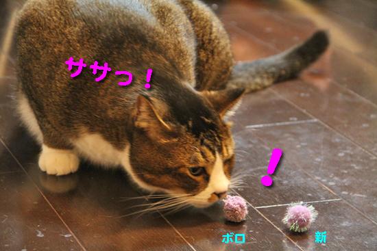 IMG_0405_Rササっ!ボロ新