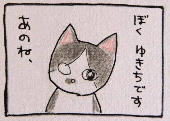 IMG_0648トリ_Rぼくゆきちです