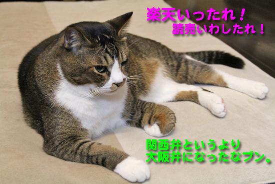 IMG_0096_R楽天いったれ!読売いわしたれ!