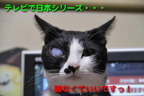 IMG_0443_Rテレビで日本シリーズ・・・