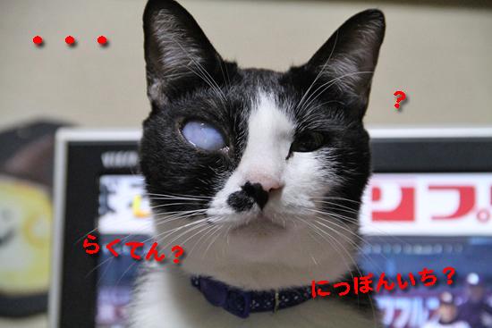 IMG_0445_Rらくてん?にっぽんいち?