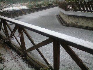 080203雪_フェンス