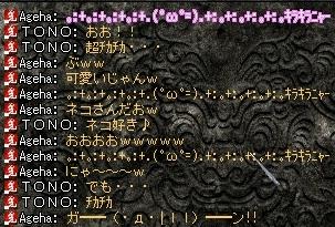 20070423122740.jpg