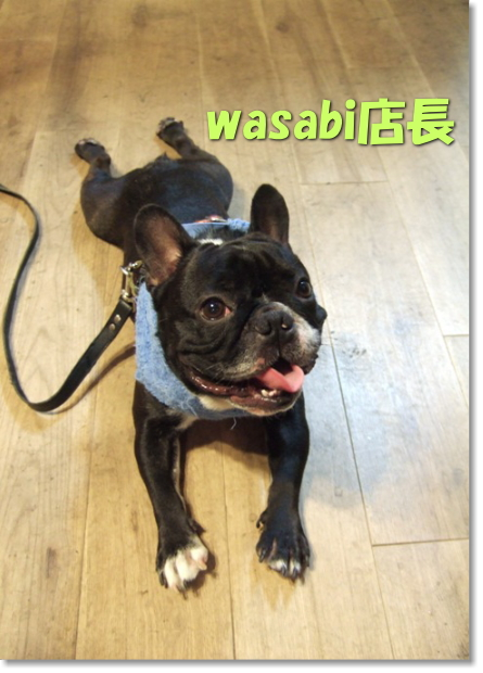 wasabi店長さん