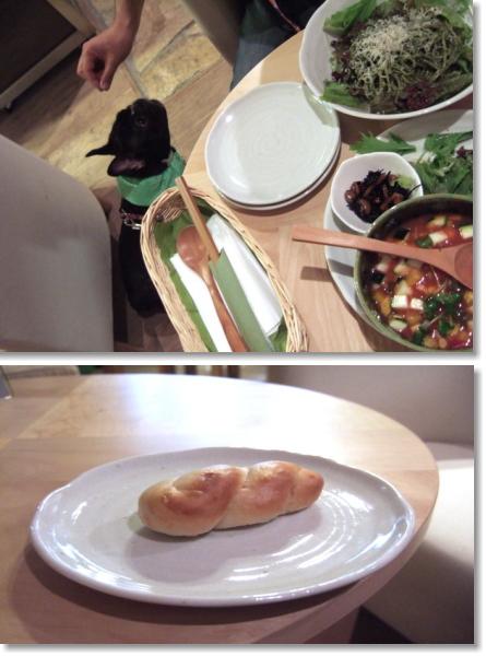 wasabiにてブービー用のパン