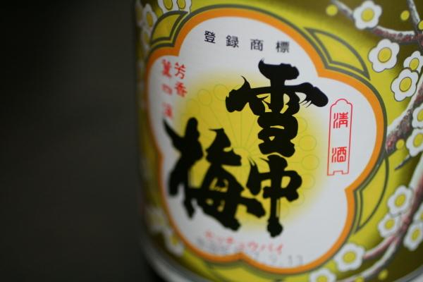 雪中梅01