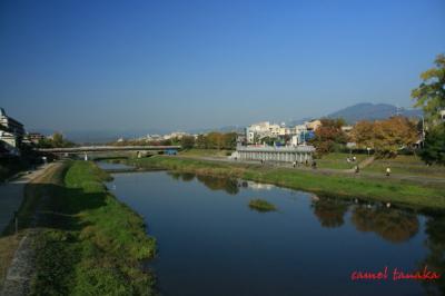 円山公園02