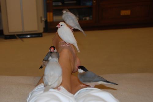 私の足で遊ぶ