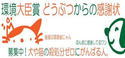 20110913153154a9e.jpg