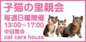 konekonosatooyakaiJ.jpg