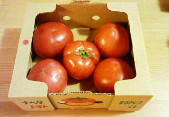 トマトやでぇ?♪