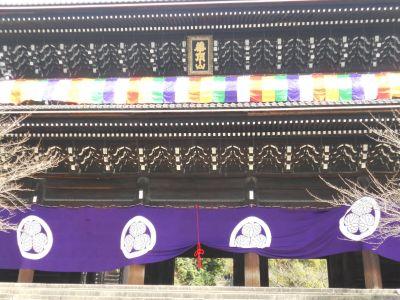高台寺・知恩院20110311 027_400