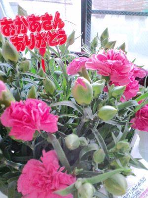 母の日のプレゼント20110508_400