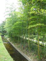 梅田・中崎町界隈探索20110727 030_200