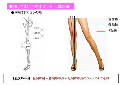 脚の軸3つ