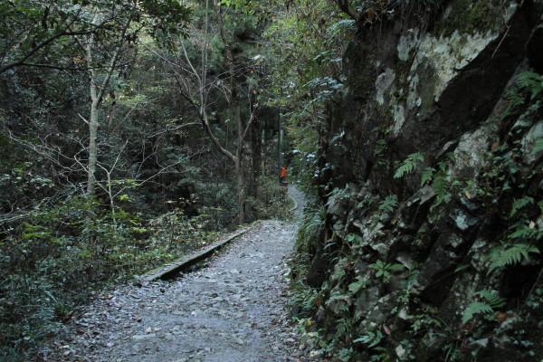 6号路登山道