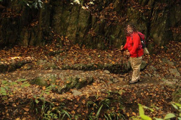 登山道がカーブしているのでチャコパパは道の向こう側にいます