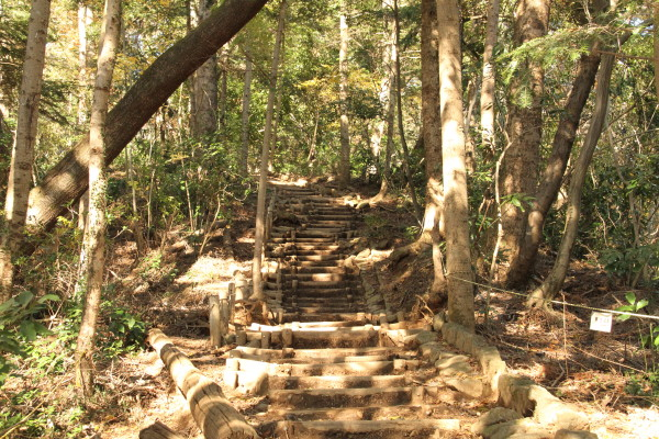 山頂に近付くと長い階段、最後に長い階段はキツイ!!