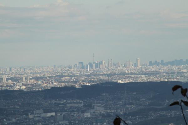 展望台からはランドマークタワーが見えます