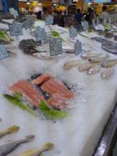お魚コーナー