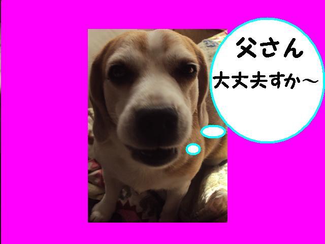 2_20131021161014349.jpg