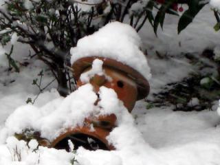 20080202_snowman.jpg