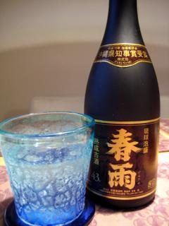 20080212_harusame.jpg