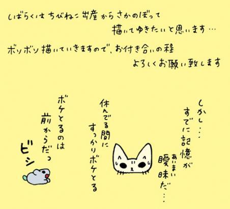 1005a4.jpg