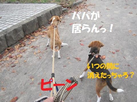 009_20111105145404.jpg