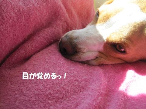 010_20111028143219.jpg