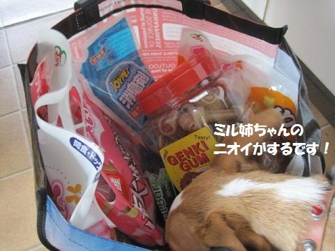 010_20111114102727.jpg