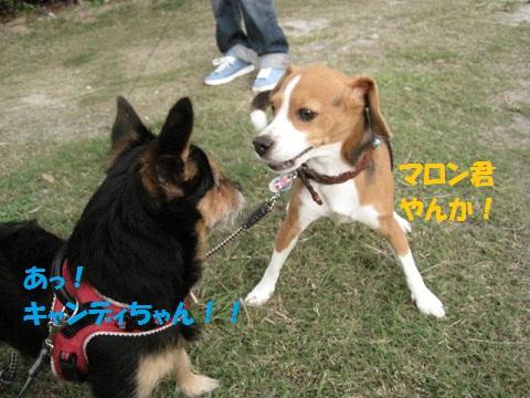 024_20111001204751.jpg