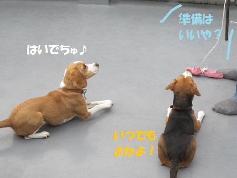 024_20111009144413.jpg