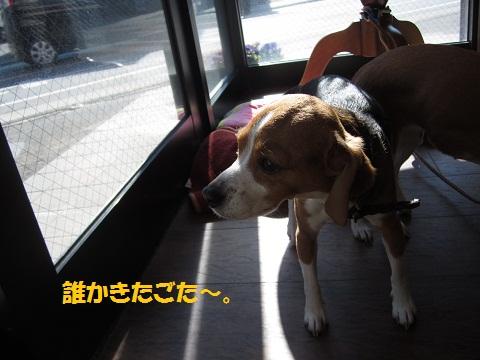 024_20120212211950.jpg