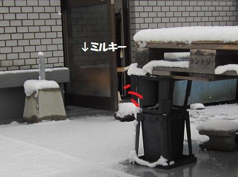 024_20120220065302.jpg