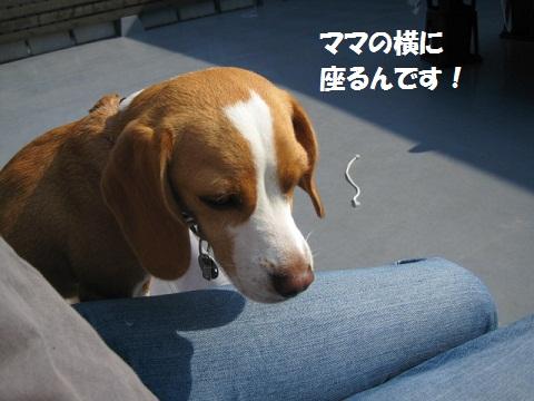 029_20111030075841.jpg
