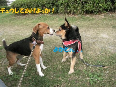 030_20111001205057.jpg