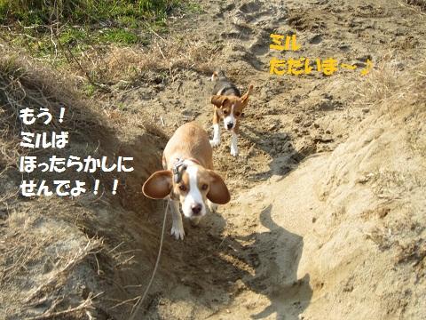 030_20120123063333.jpg
