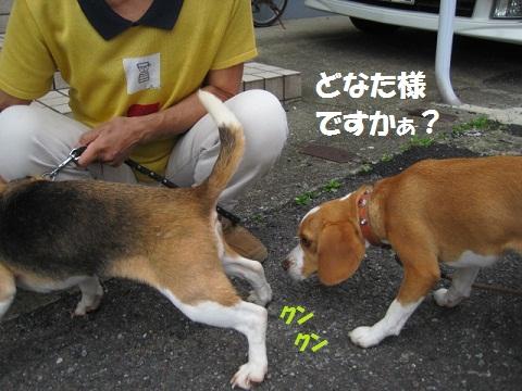 042_20110929174523.jpg