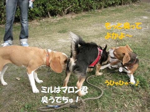 043_20111001204749.jpg