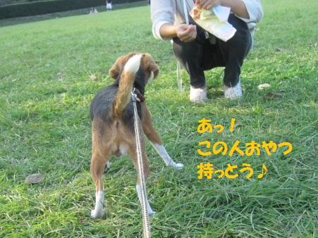 054_20111014070123.jpg