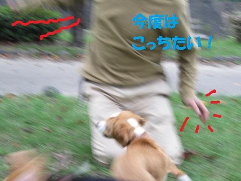 056_20111004071244.jpg