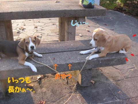 088_20111020074908.jpg
