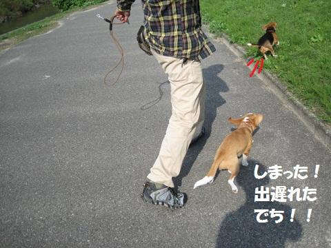 090_20111017080500.jpg