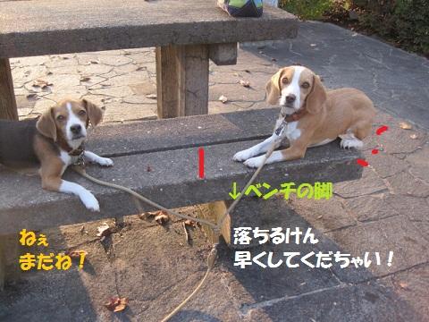 090_20111020074907.jpg
