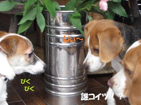 093_20120223063608.jpg